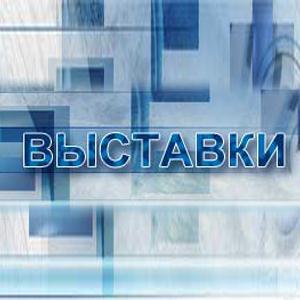 Выставки Грачевки
